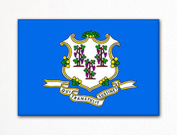 Connecticut State Flag Fridge Magnet