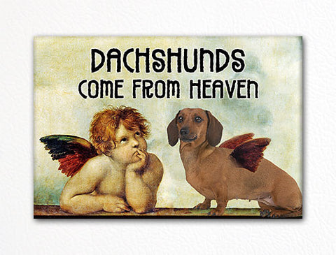 Dachshunds Come From Heaven Fridge Magnet