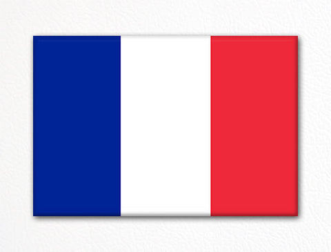 Flag of France French Flag Fridge Magnet