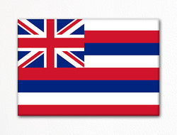 Hawaii State Flag Fridge Magnet