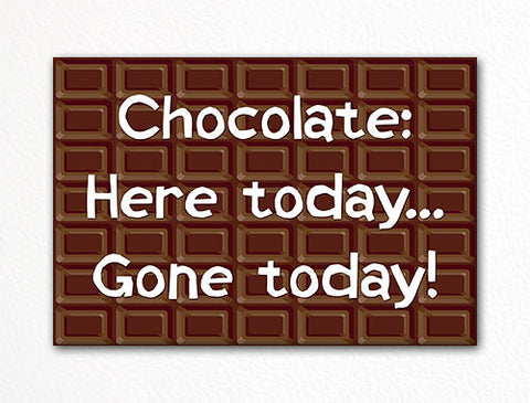 Chocolate: Here Today Gone Today Fridge Magnet