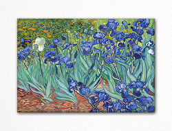 Irises by Vincent van Gogh Fridge Magnet