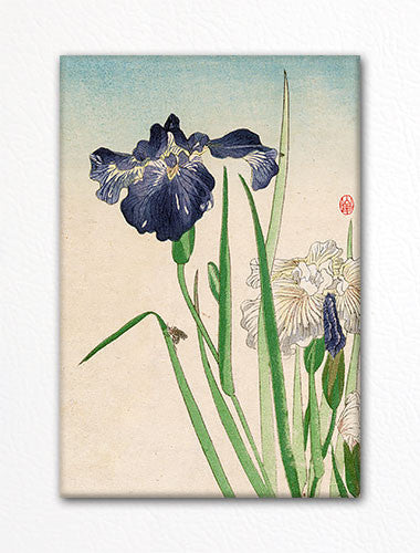 Irises with Bee Woodblock Print Fridge Magnet
