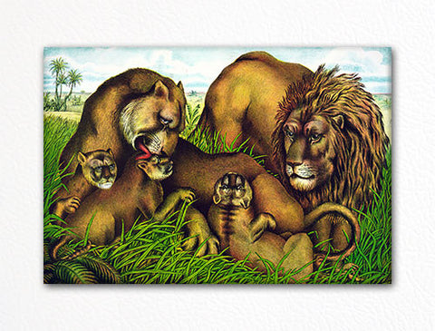 Lion Family Fridge Magnet