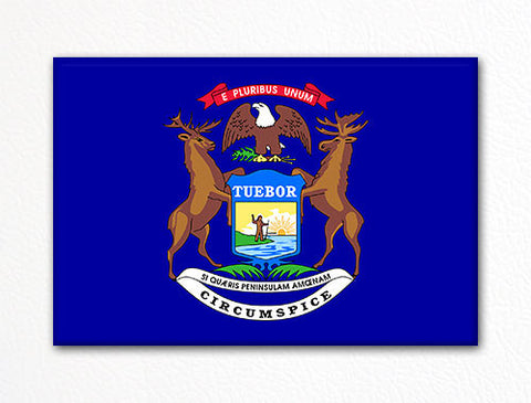 Michigan State Flag Fridge Magnet