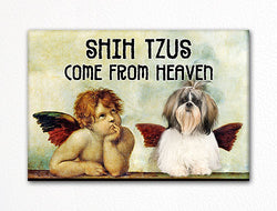 Shih Tzus Come From Heaven Fridge Magnet