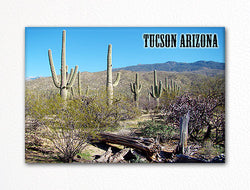 Tucson Arizona Fridge Magnet