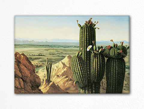 View from Maricopa Mountain near the Rio Gila Fridge Magnet