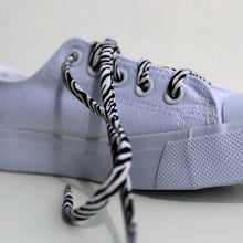 Shoelaces - Zebra - Animal Print