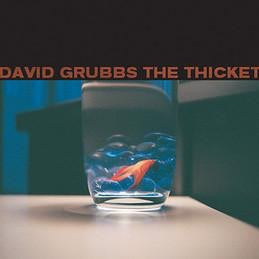 David Grubbs - The Ticket