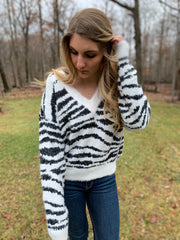 V-Neck Zebra Print Sweater