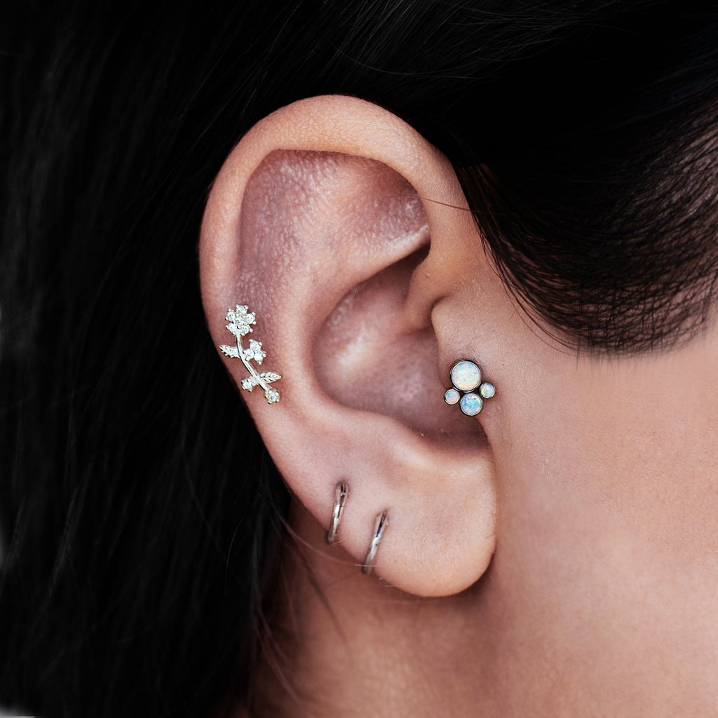 Attraction Tragus Helix & Conch Piercing on model - titanium/opal