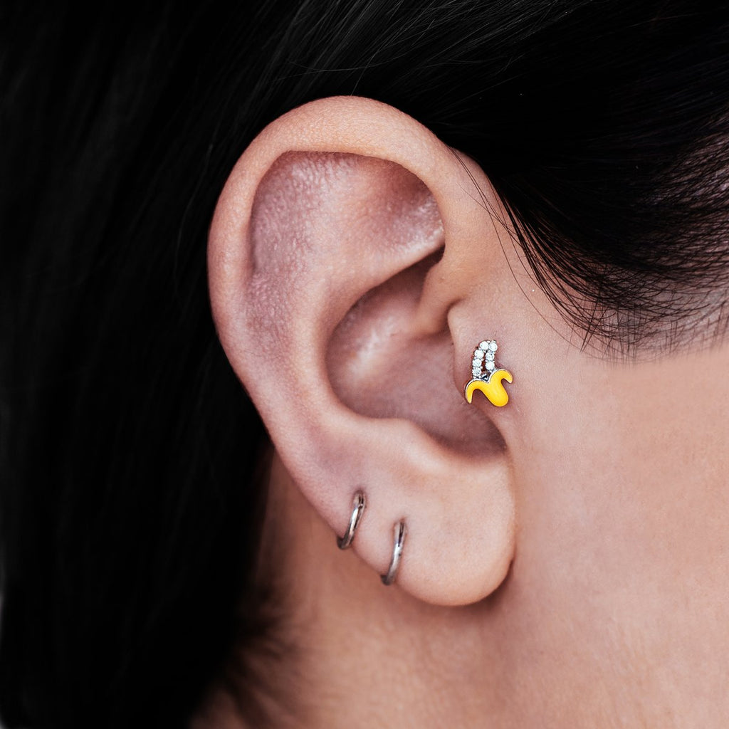 Banana Tragus Helix & Conch Piercing on model - silver