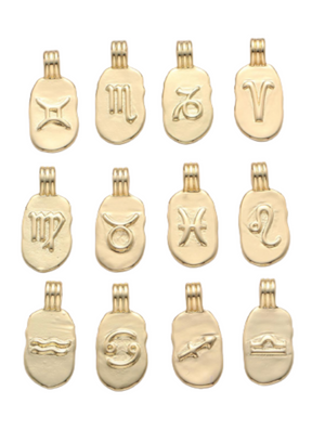 The 14K Gold Filled Horoscope Pendant Necklace  Danielajanette.com