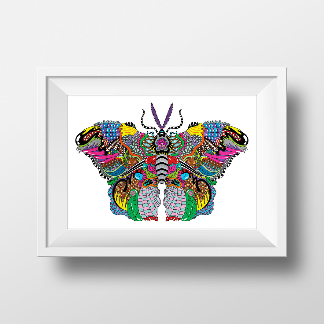 kids nature butterfly bugs art print illustration design