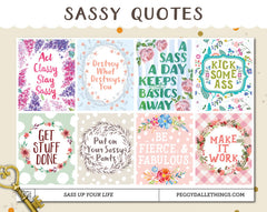 Sassy Motivational Quotes Full Boxes Planner Stickers