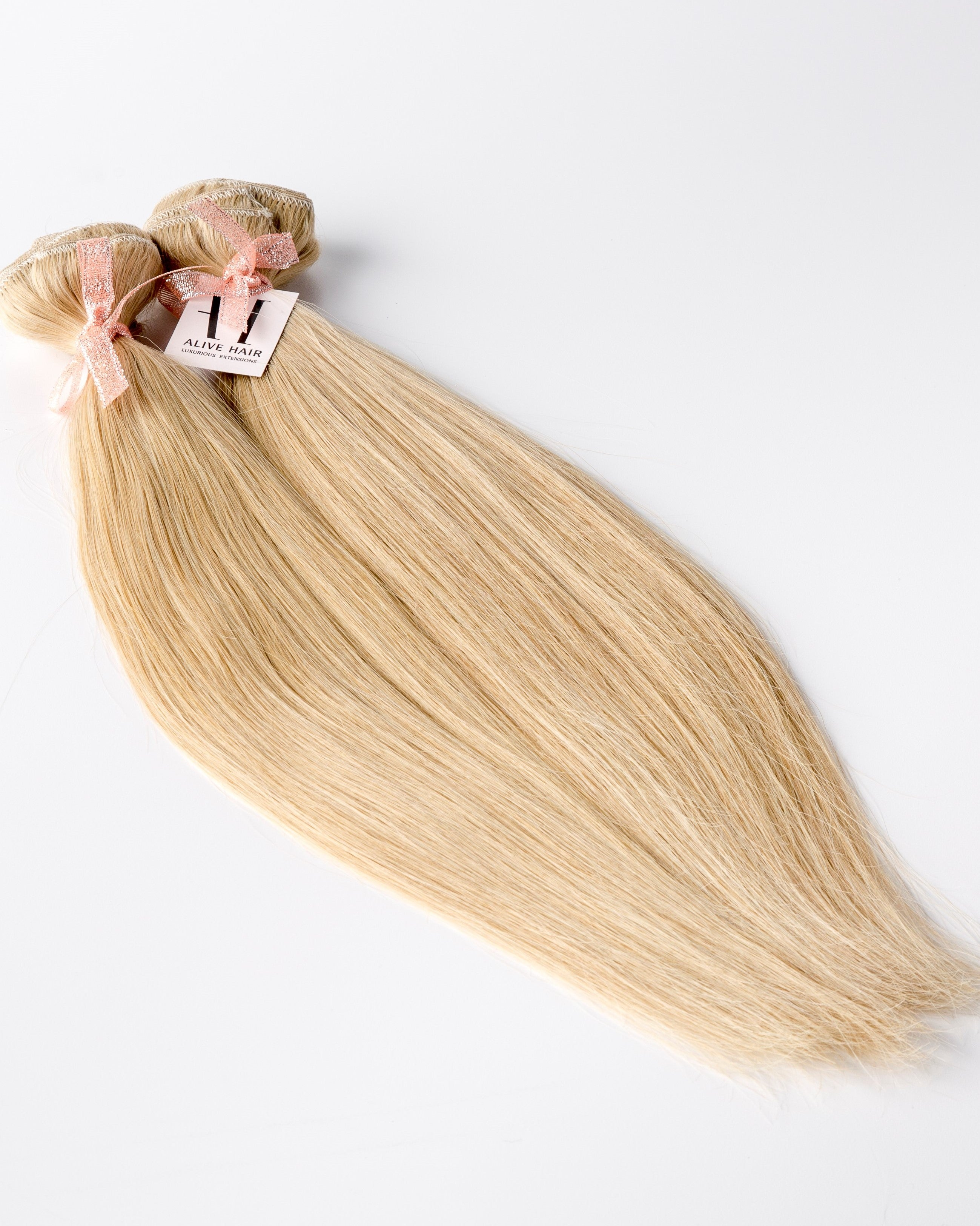 Copy Of Champagne Blonde N17 Alive Hair Extensions
