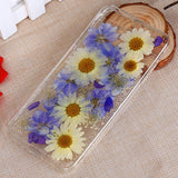 Assorted Real Dried Pressed Flowers iPhone Case