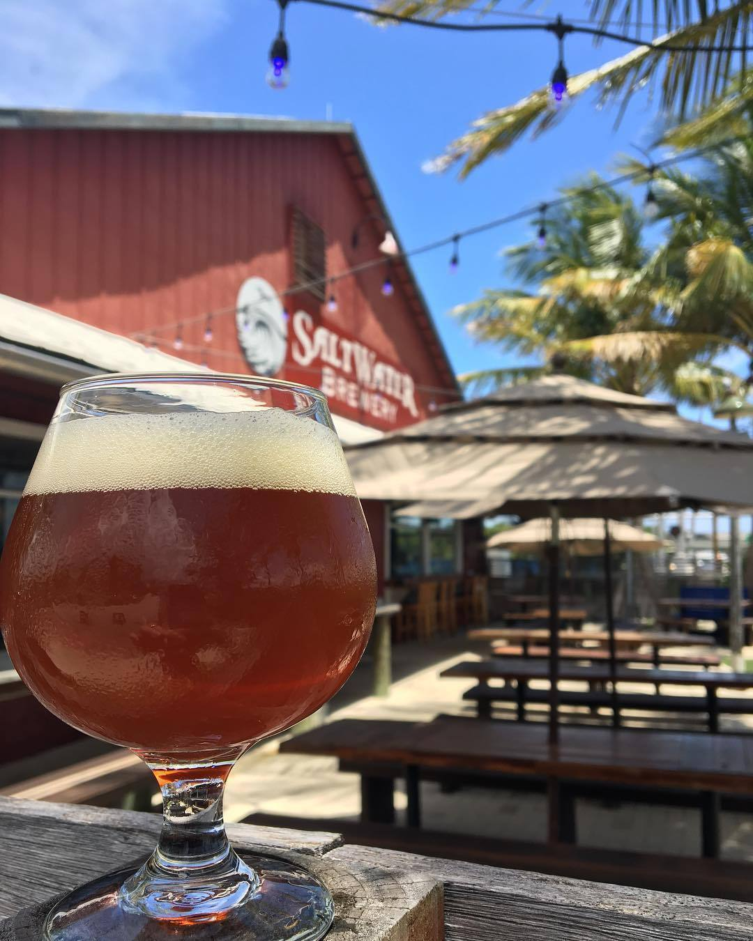 What's Brewing at Saltwater Brewery - December 27th