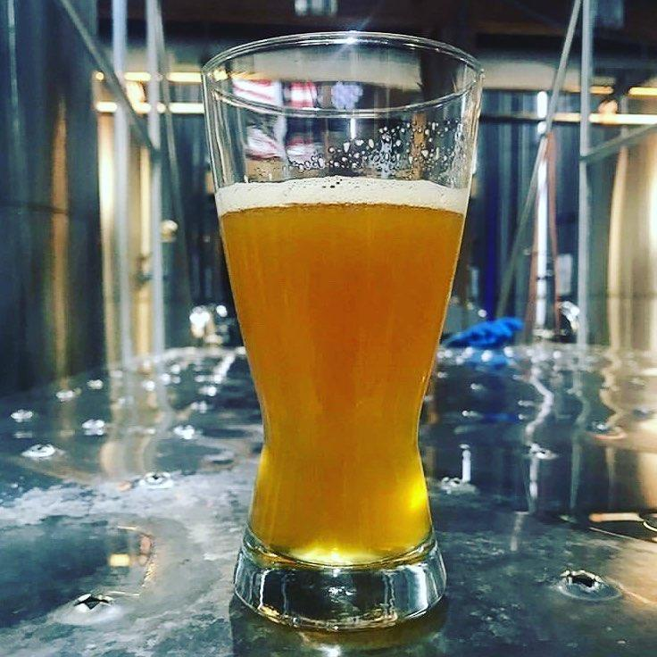 What's Brewing at Saltwater Brewery - March 7th