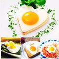 Stainless steel Cute Shaped Fried Egg Mold ( 5pcs/set)-cooking-Shopolica-Shopolica