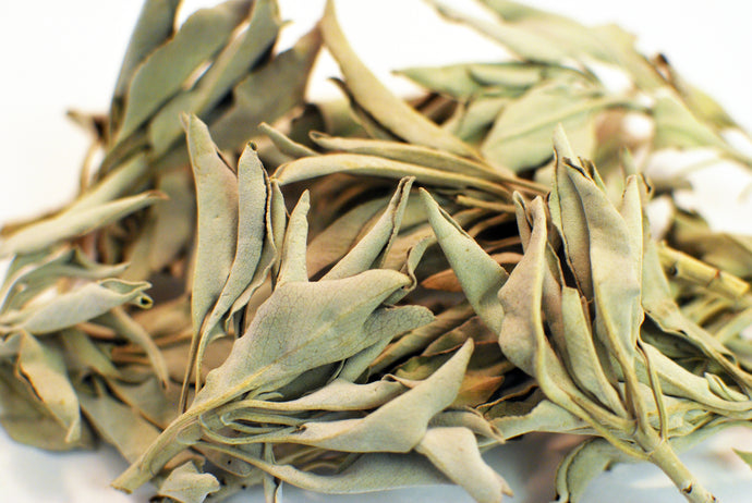 White Sage Clusters 1 lb