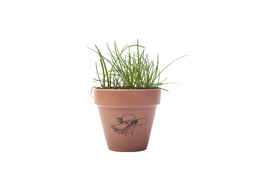 Chives - Handpainted Terracotta Pot - Outdoor/Indoor Plant