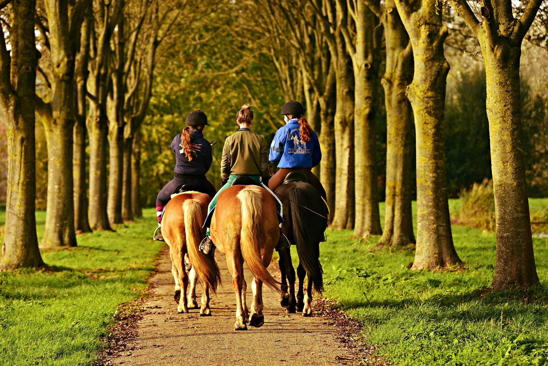 Discover the Best UK Horse Trails with Jodie Kidd
