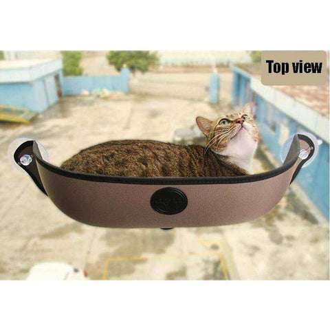 CAT HAMMOCK BED SALE PRICE
