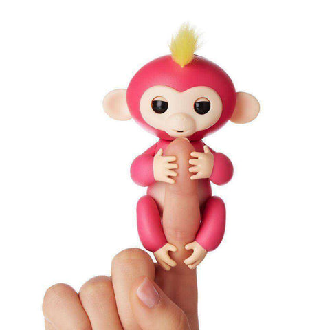 Finger Monkey SALE PRICE