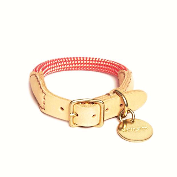 Howlpot We Are Tight: Rope Dog Collar| Coral Ade - FURRPLAY