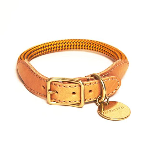 Howlpot We Are Tight: Rope Dog Collar| Yellow Jacket