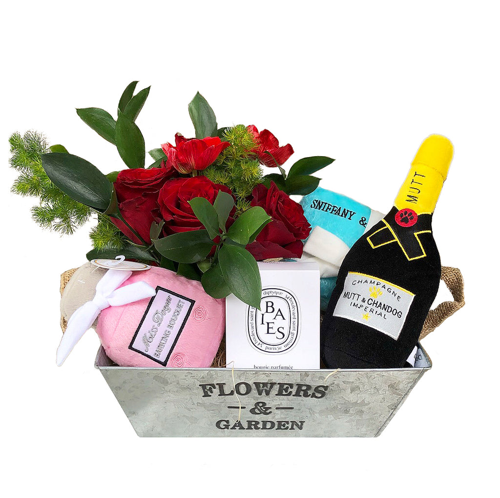 Luxury Christmas Gift Basket for Dog Lovers