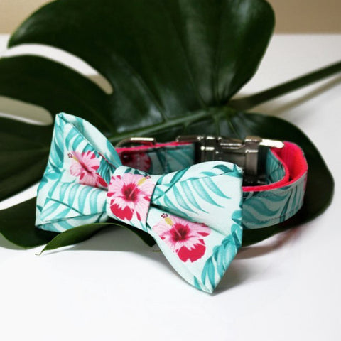 TRAX TIES | The Isla Bow Tie with Matching Collar