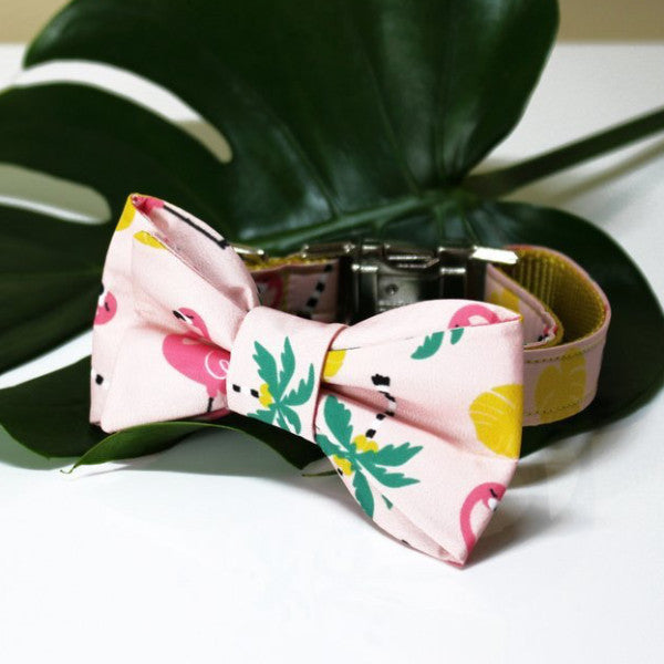 TRAX TIES | The Kayla [ Pink ] Bow Tie with Matching Collar