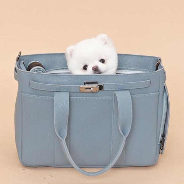 Meloni Coco Sora Sora Pet Carrier | Ocean - FURRPLAY