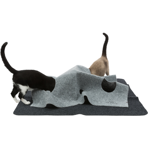 Cat Activity Adventure Carpet
