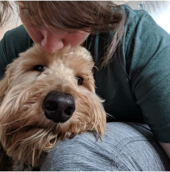 Top 10 signs that you're a Doodle Mom