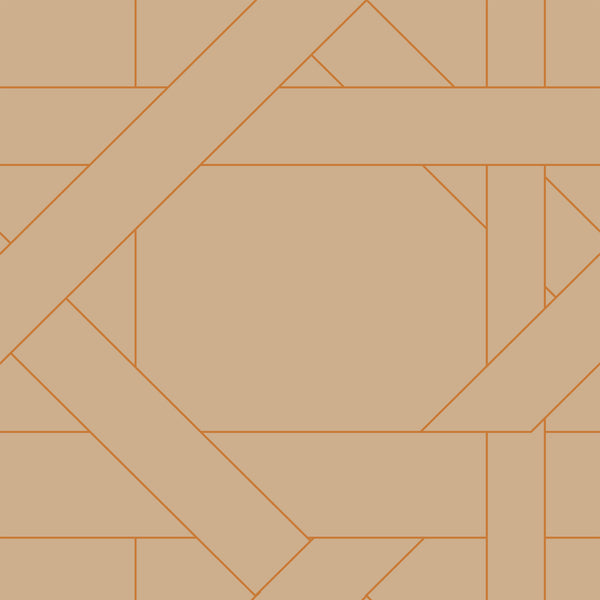 Lattice Fabric <b>Orange & Tan</b>