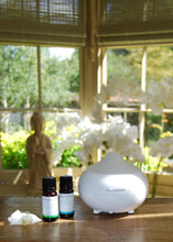 Electric Diffuser - Beau's Boutique