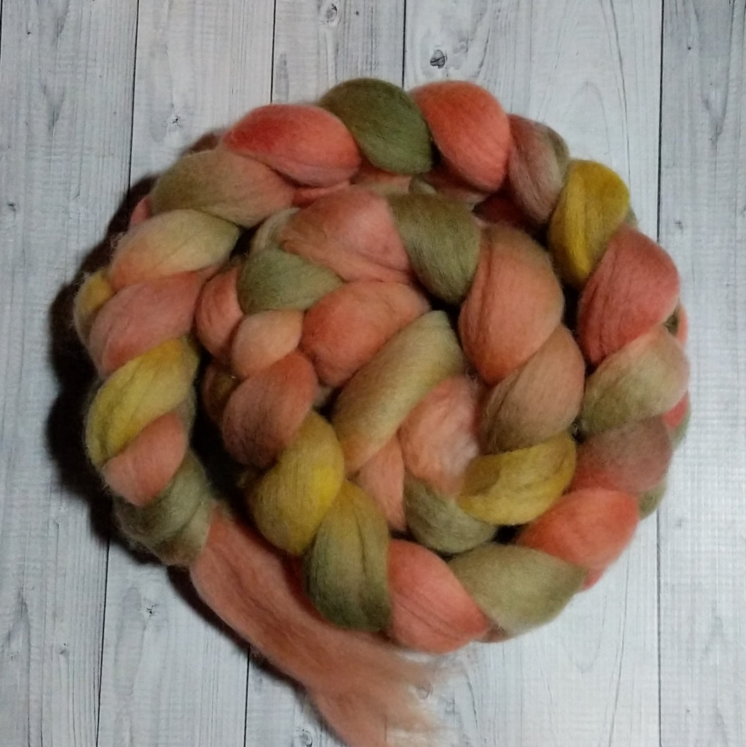 Lucky Charm, Polwarth Combed Top