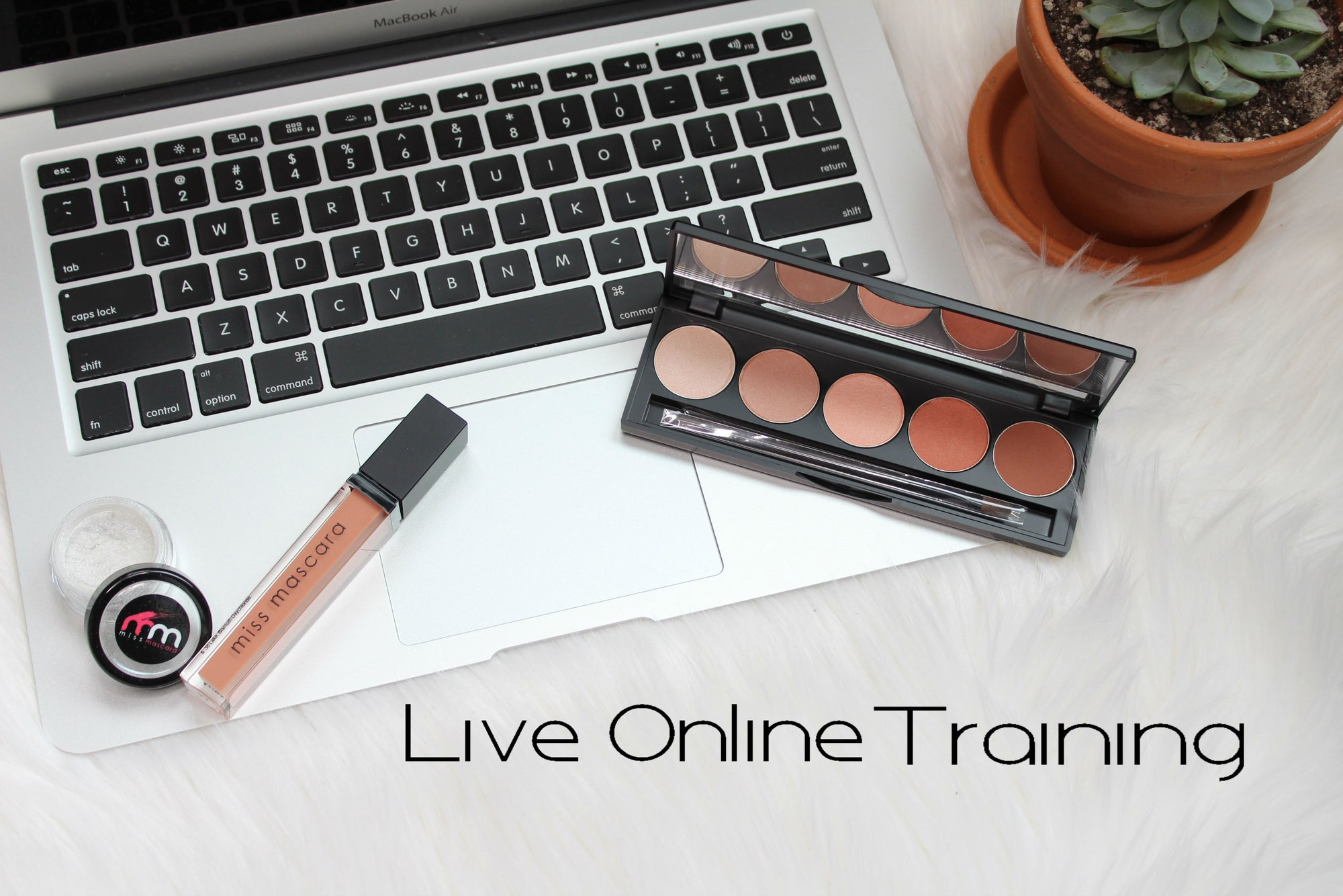 ONLINE MAKEUP TRAINING