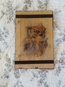 Owl 6 x 9 Book of Shadows