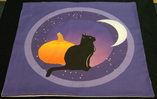 Black Cat Looks at the Moon