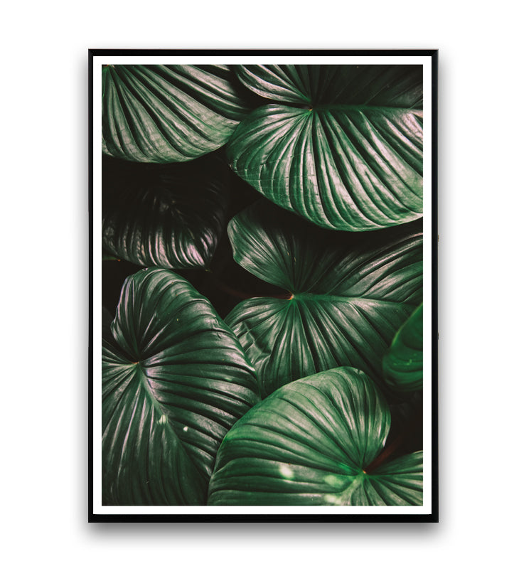 Tropical leaves - botanical print nr. 1 - Wallzilladesign