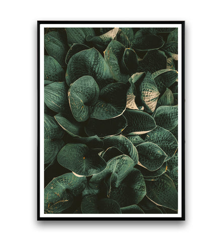 Copy of Copy of Tropical leaves - botanical print nr. 3 - Wallzilladesign