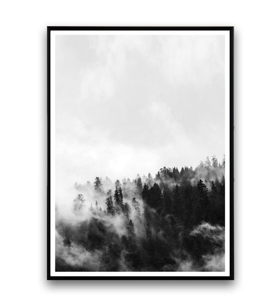 Foggy forest black and white print 2 - Wallzilladesign