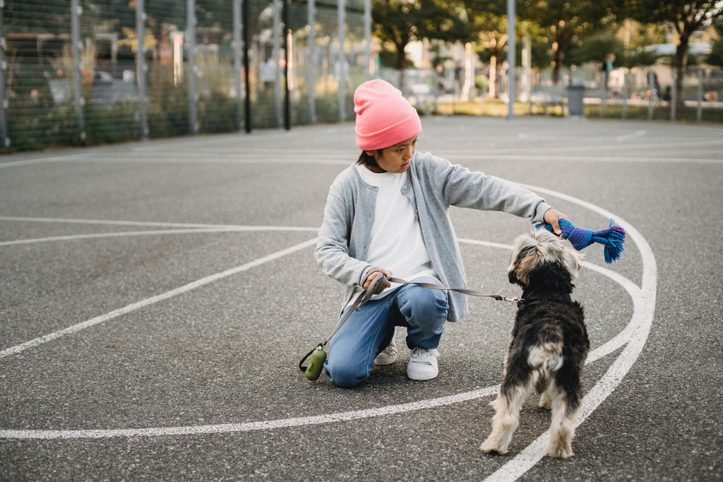 young boy training his dog