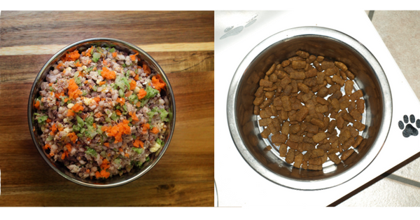side by side comparison of kibble and rick's dog deli meals