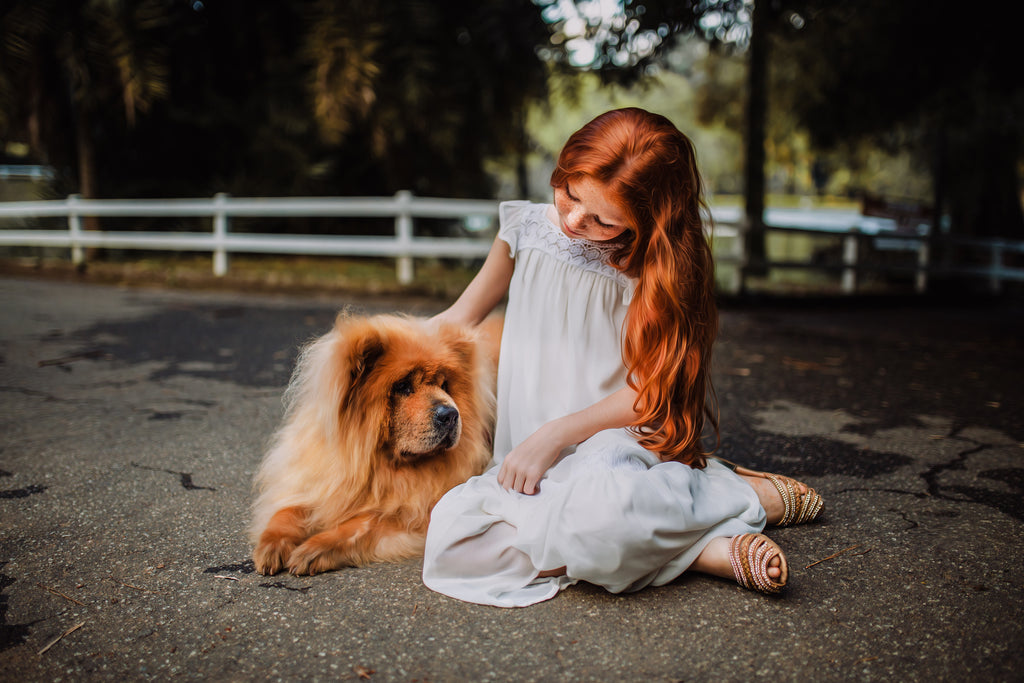 young girl petting chow chow